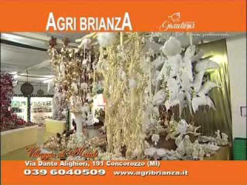 Natale agri brianza 2009 youtube for Agri brianza natale