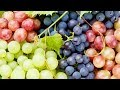 5 Incredible Health Benefits Of Grapes