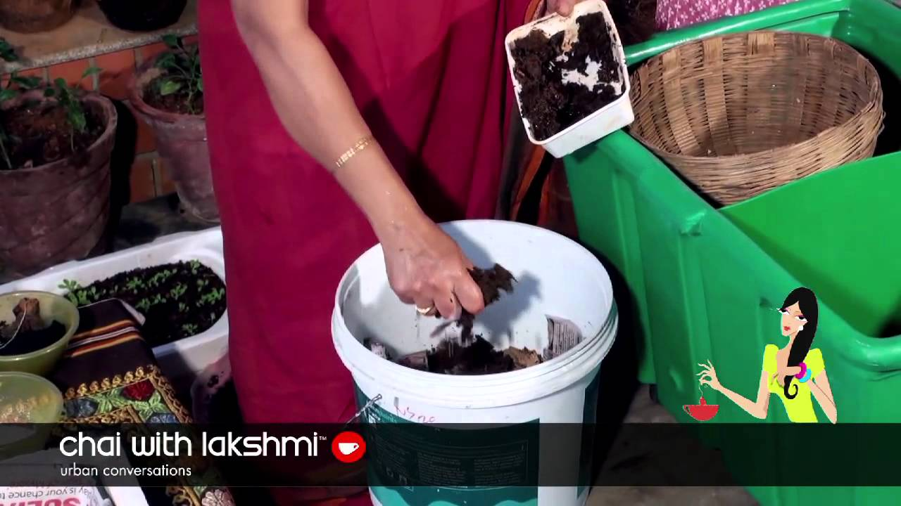 How to Vermi-Compost in your Apartment - YouTube