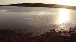 Aneriojärvi,  Salo / Suomusjärvi