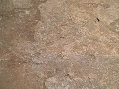Pre Concrete Staining