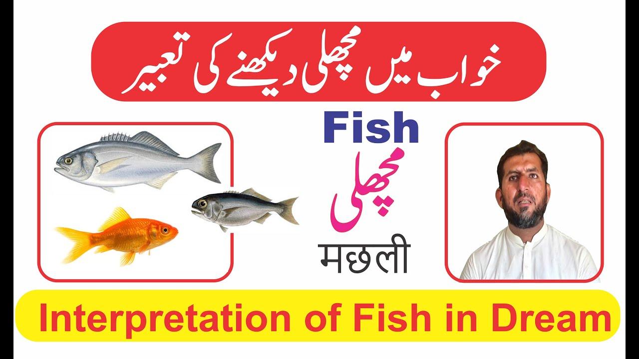 Interpretation of ٖFish in dream || Khwab mein Machli dekhna || خواب میں مچھلی دیکھنے کی تعبیر