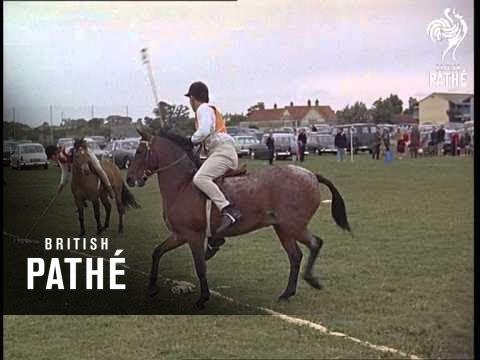 Pony Games (1967)