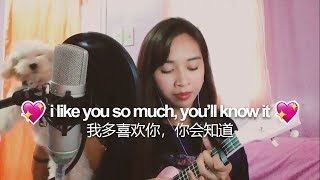 I Like You So Much, You'll Know It (我多喜欢你,你会知道) - A Love So Beautiful OST Ukulele Cover by Jaytee