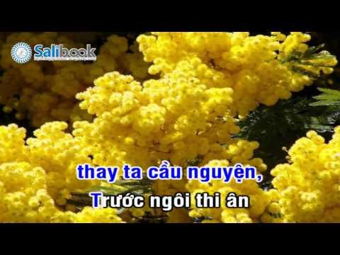 [Karaoke Thánh Ca HTTL-VN] 118 Thầy Tế Lễ Ta - Salibook