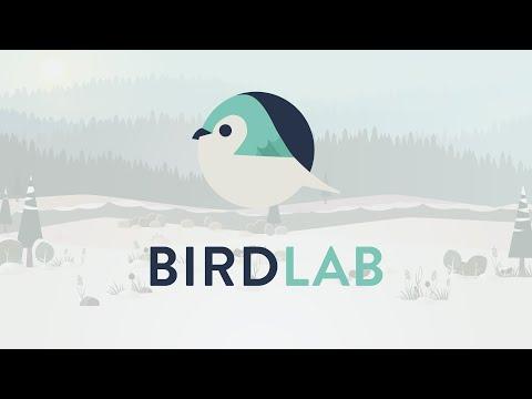 Observer les oiseaux avec l'application BirdLab