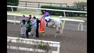第3回東京スプリング盃(SIII)  優勝馬 フジノウェーブ
