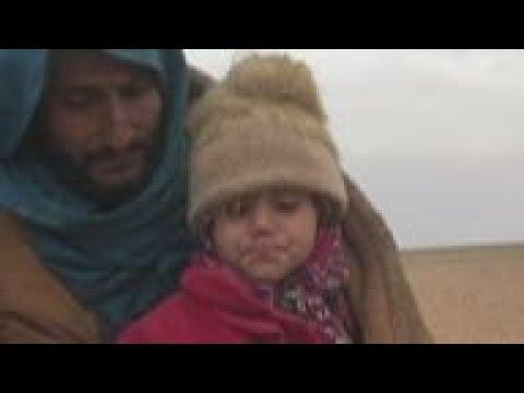 Milestones in Syria's