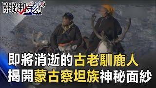 即將消逝的古老馴鹿人 揭開蒙古察坦遊牧民族神秘面紗! 關鍵時刻 20170411-4 劉燦榮 馬西屏 黃創夏