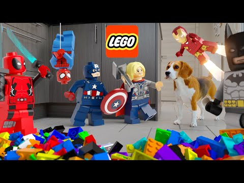 LEGO in REAL LIFE COMPILATION ANIMATION : Legos living with funny dogs