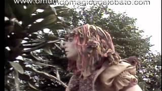 Sítio do Picapau Amarelo Emília é atacada por cães