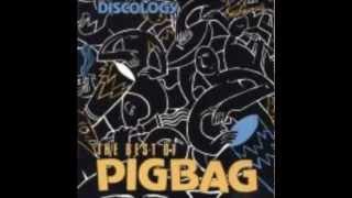 Pigbag- Can