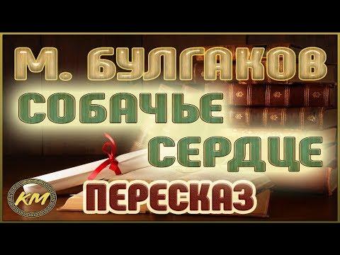 Собачье СЕРДЦЕ. Михаил Булгаков