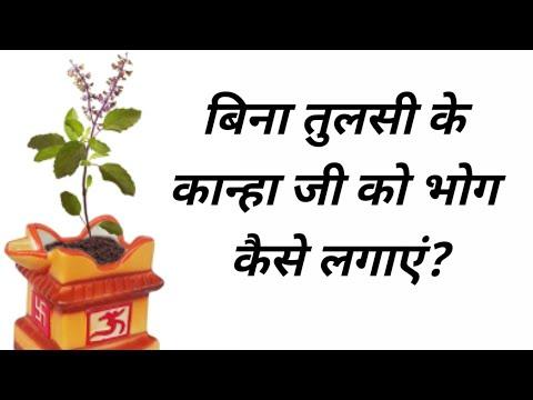 Video - https://youtu.be/UmnleMyuLpIलड्डू गोपाल जी को बिना तुलसी पत्र के भोग किस प्रकार लगाएं