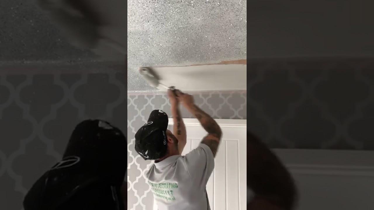 Walls Metallic Silver Glitter Ceiling
