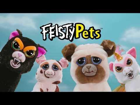 Feisty Pets TVC