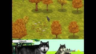 Wolf - Timber Region - Find Water (scenario #1)