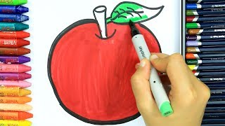 Apple Coloring Pages 🍎 | How to Draw Apple | Learn Coloring