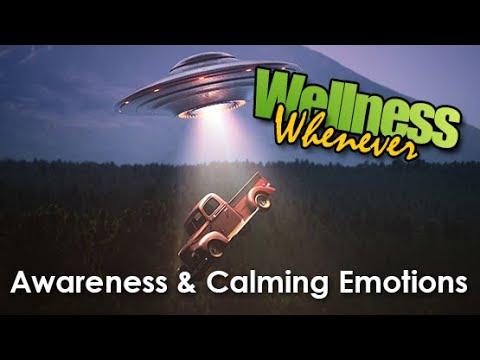 Wellness Whenever - Awareness & Calming Emotions
