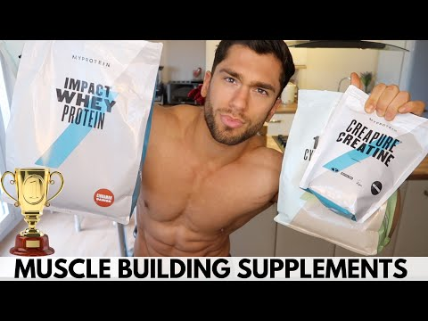 Best Muscle Building Supplements | Protein Powder, Creatine And More Explained