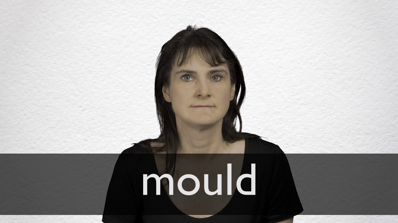 "Hindi Translation of ""mould"" 