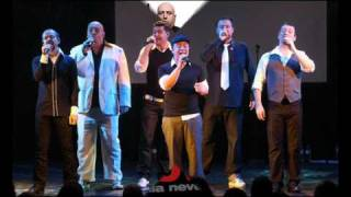 Voice Male - The Lion Sleeps Tonight (A cappella)