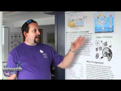 Dr. Lomas on Phytoplankton Ecology