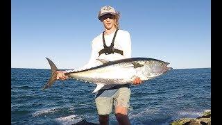 Land Based Spanish Mackerel and Tuna Fishing // Australia 2016/17