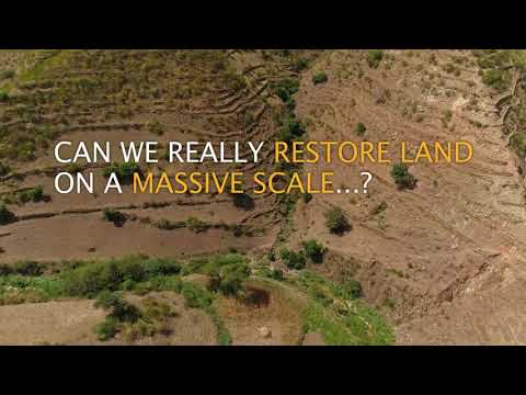 Land Restoration: Beyond Sustainability