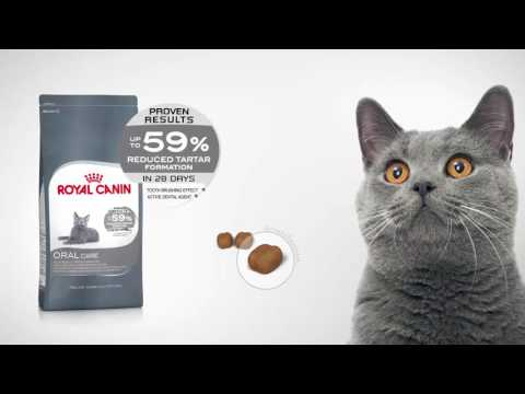 Royal Canin Feline Care Nutrition - Oral Care