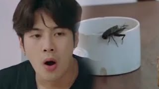 GOT7 vs BUGS A NEVER ENDING SAGA!!!