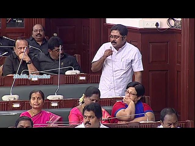 29.05.2018 - T. T. V. Dhinakaran  ??????????????? ?????? | AMMK MLA | TN Assembly