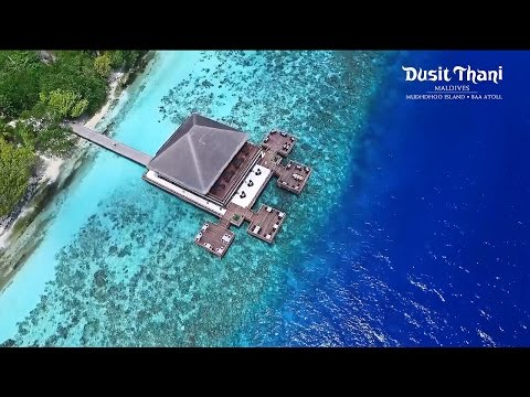 Dusit Thani Maldives Resort - Ultimate luxury Maldives Hotel