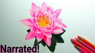 How to draw lotus(narrated)-How to draw a flower- how to draw a rose using prismacolors