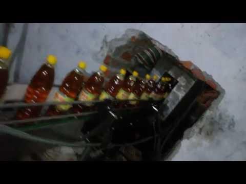 Mustard Oil/ Adible Oil Filling Machine (60 BPM) Rotary Type