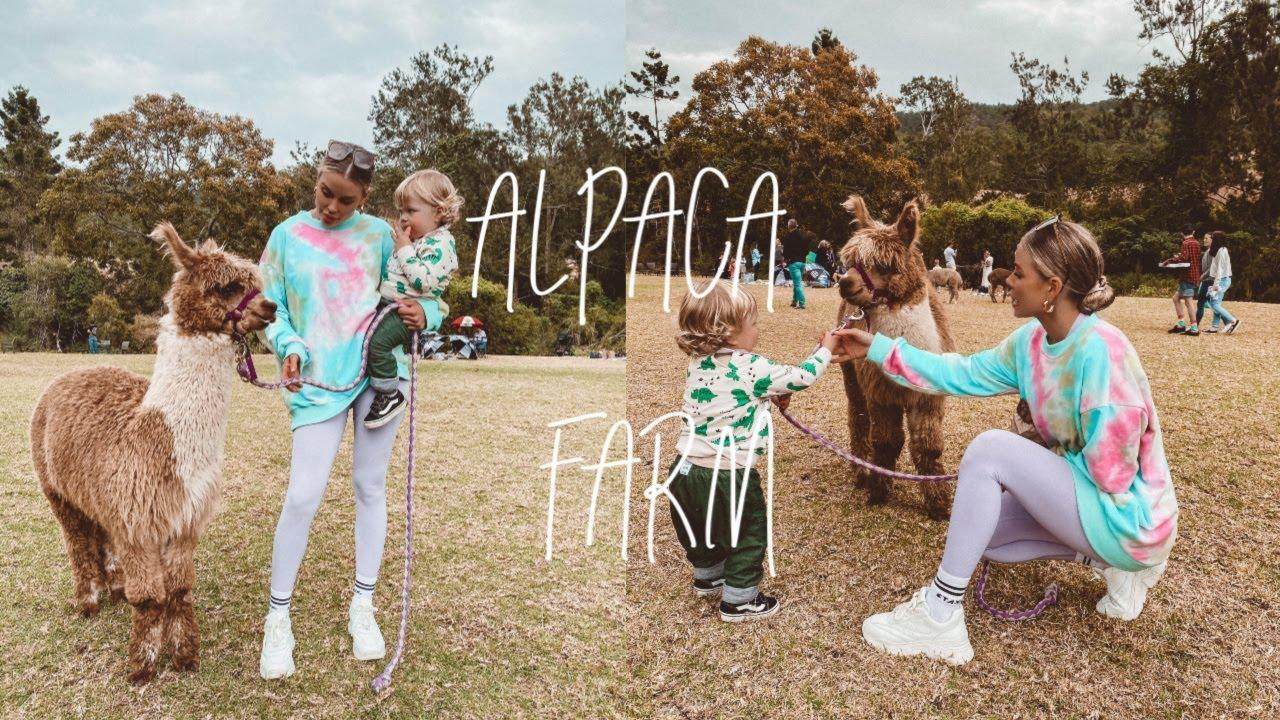 FAMILY DAY VLOG | Alpaca Farm