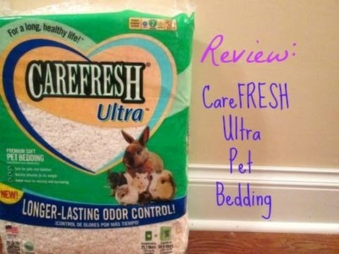 looks product colors interesting a guinea that bedding blog review cavy soft carefresh savvy pig bed
