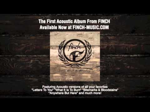 Ender (Acoustic)