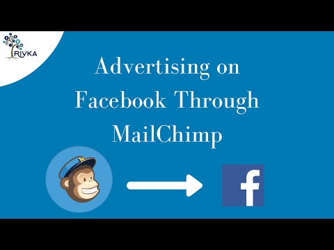New MailChimp Facebook Ad Tool Review