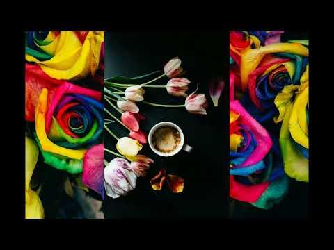 Download Flower  147