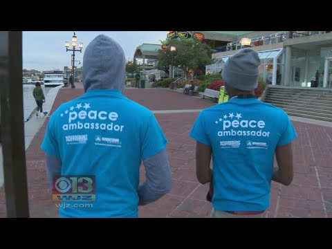 Non-Profit Organizations Team Up In Wake Of Baltimore Inner Harbor Assaults