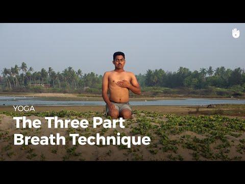 Learn the Three Part Breath Technique Dirga Pranayama | Yoga