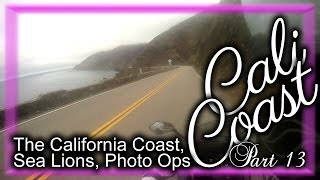 The Beautiful California Coast, Sea Lions, Photo Ops - Cali Coast Part 13