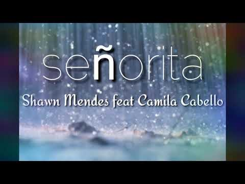 Señorita - Shawn Mendes ft Camila Cabello (lyric music)