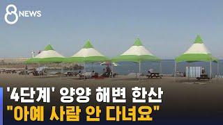 """[현장] '4단계' 양양 해변 한산…""""아예 사람 안 다녀요"""" / SBS"""