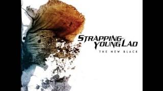 Watch Strapping Young Lad The New Black video