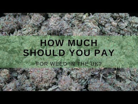 How Much Should you Pay For Weed in the UK? | CannaVlog #54