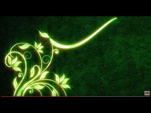 Free HD download Wedding background, Free motion graphics, wedding graphics animation FLORAL 004 thumbnail
