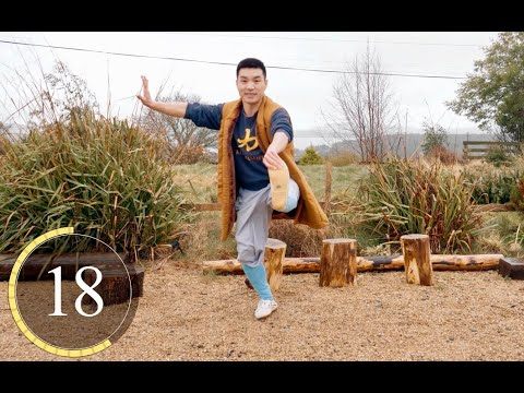 Shaolin Kung Fu Dynamic Strengthening Training at Home - 30 Secs Interval Training