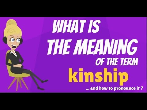 What is KINSHIP? What does KINSHIP mean? KINSHIP meaning, definition & explanation